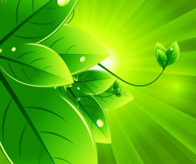 Set of Eco friendly with green Leaves background vector 04