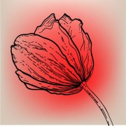 Link toVivid hand drawn tulip background vector 01