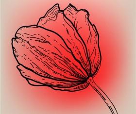 Vivid Hand drawn Tulip background vector 01