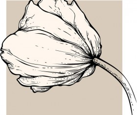 Vivid Hand drawn Tulip background vector 05