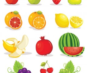 Various tasty Fruit elements vector 01