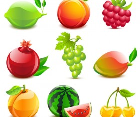 Various tasty Fruit elements vector 02
