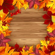 Link toAutumn elements and gold leaves background vector 03