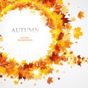 Link toCreative autumn leaves figures vector background 02