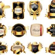 Link toSet of gold luxury labels design elements vector
