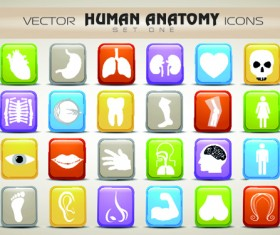 Set of Different Medical icons vector 03