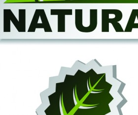 Set of Natural elements stickers vector graphic 04