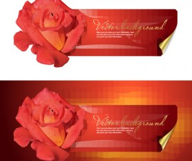 Bright Rose background vector 05