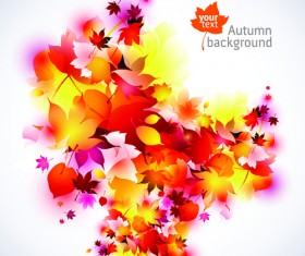 Set of Abstract Autumn Leave design elements vector 01
