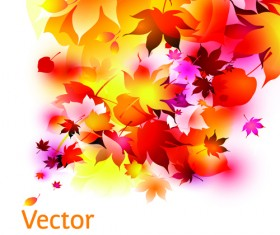 Set of Abstract Autumn Leave design elements vector 02
