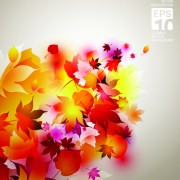 Link toSet of abstract autumn leave design elements vector 03