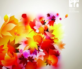 Set of Abstract Autumn Leave design elements vector 03