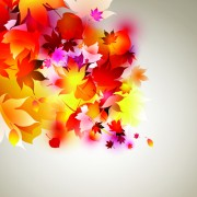 Link toSet of abstract autumn leave design elements vector 04