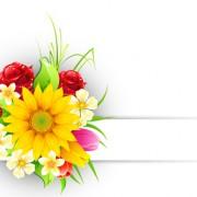 Link toSpring flower elements greeting cards vector 04