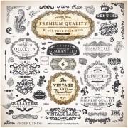 Link toVintage label and ornaments design vector set 01