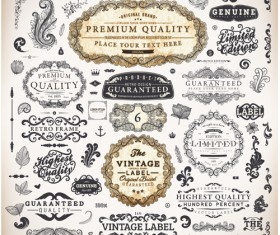 Vintage label and Ornaments design vector set 01