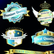 Link toVintage quality and premium labels vector 03