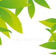 Link toElements of fresh green vector backgrounds 01