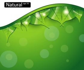 Shiny Green leaves background design vector 03