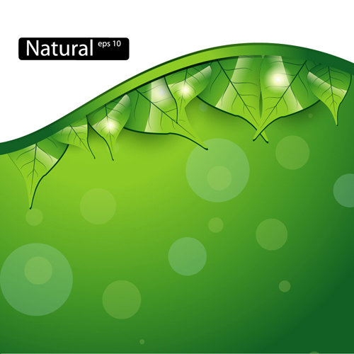 Shiny Green Leaves Background Design Vector 03 Vector