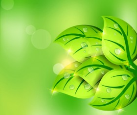 Shiny Green leaves background design vector 05