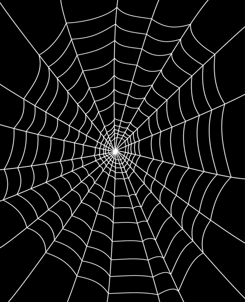 Set Of Spider Web Vector Background 02