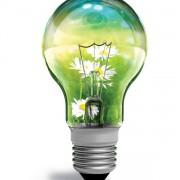 Link toSet of light bulb design elements vector 01