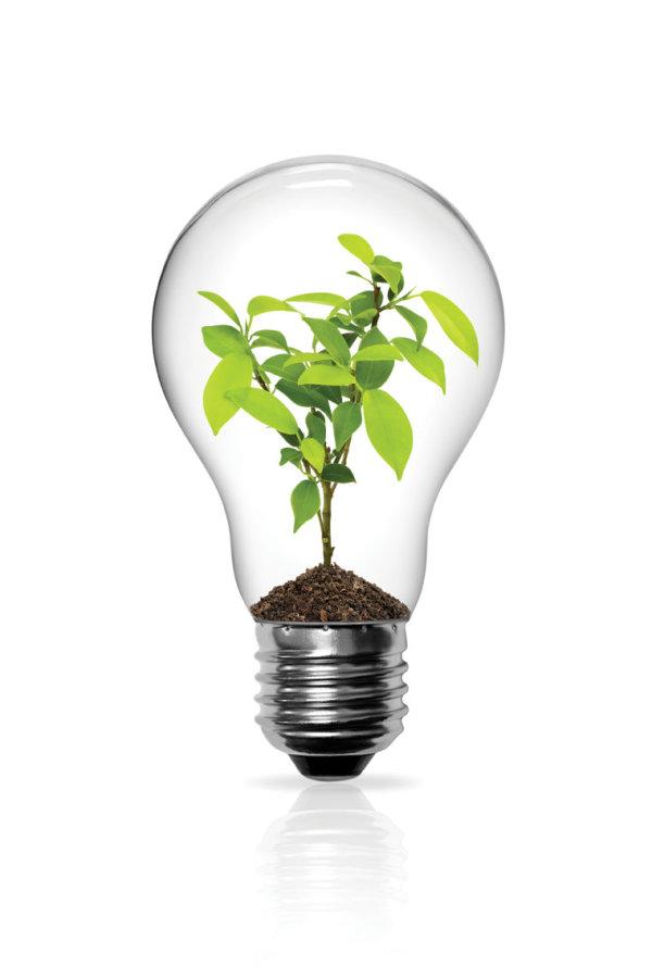 Set Of Light Bulb Design Elements Vector 03 Free Download