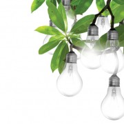 Link toSet of light bulb design elements vector 04