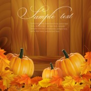 Link toAutumn pumpkin with wood board background vector 01