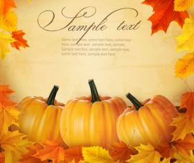Autumn pumpkin with Wood Board background vector 02