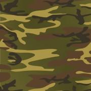 Link toDifferent camouflage pattern design vector set 02