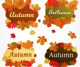 Different Autumn leaves frames vector set
