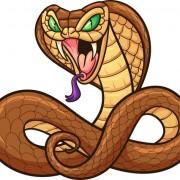 Link toElements of 2013 snake year design vector 03