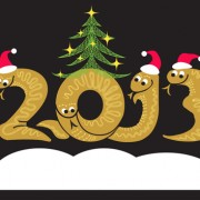 Link toSet of 2013 year of snake design vector 04
