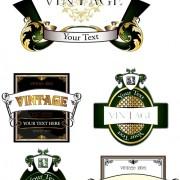 Link toVarious vintage green labels vector set