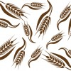 Set of Wheat patterns mix vector 02