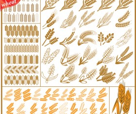 Set of Wheat patterns mix vector 04