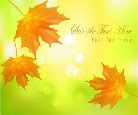 Yellow Autumn Leaves vector backgrounds set 01