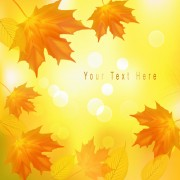 Link toYellow autumn leaves vector backgrounds set 02