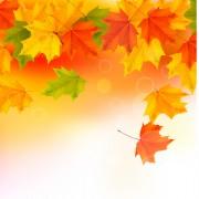Link toShiny autumn vector background art 02