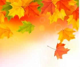 Shiny autumn vector background art 02