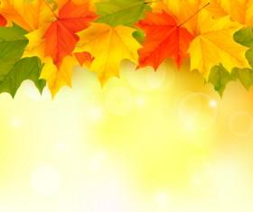 Shiny autumn vector background art 03