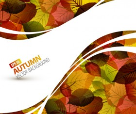 Autumn Beautiful leaves theme background vector 03