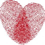 Link toSet of unusual heart design elements vector 04