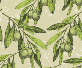 Olive Branches elements vector graphic