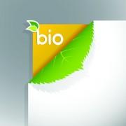 Link toCorner template bio design vector 02