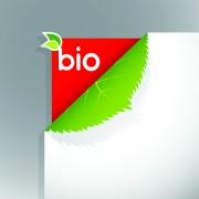 Link toCorner template bio design vector 03