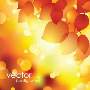 Link toAutumn theme backgrounds art vector 03