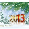 Bright 2013 New Year design vector material 02